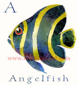 A - the first letter in the Animal Alphabet - is for Angelfish