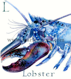 L - the 12th  letter in the Animal Alphabet-is for Lobster